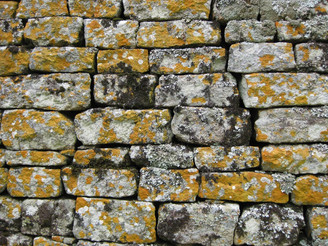 Wall at Great Zimbabwe