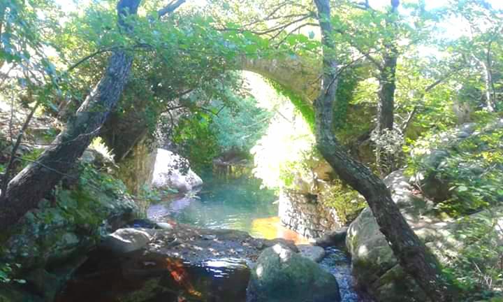 pont génois