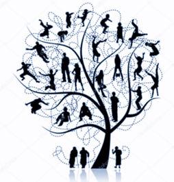 arbre RA site_edited_edited.jpg