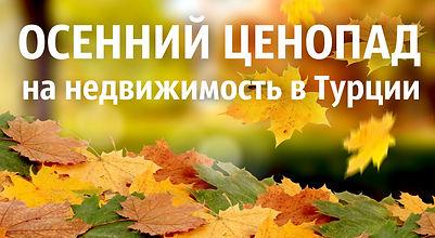 Осенний ценопад.jpg