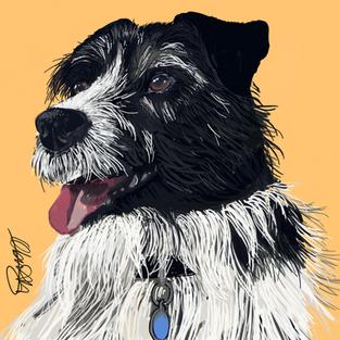 Terrier - Dog Portrait