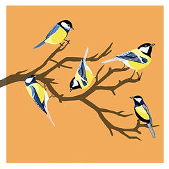 Blue and Yellow Birds - Orange Backgroun