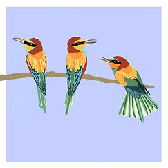 3 Birds - Yellow, orange and red.jpg