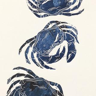 Lino - Blue Crabs