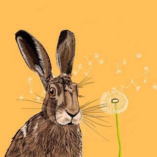 Digital - Hare