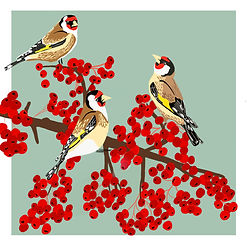 Red Yellow Birds, Red Berries.jpg