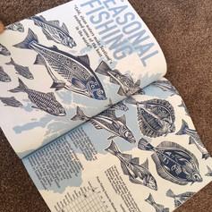 Collaboration Magazine - Seasonal Fishing
