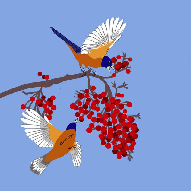 Digital - Birds (1)