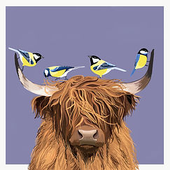 HIGHLAND COW - PURPLE.jpg