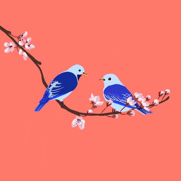 Digital - Birds (2)