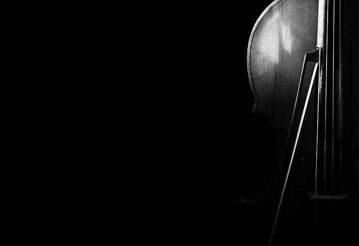 cellist New York