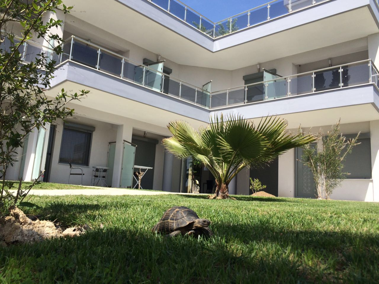 Rent apartments Sithonia