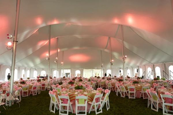 Pink-Themed Reception