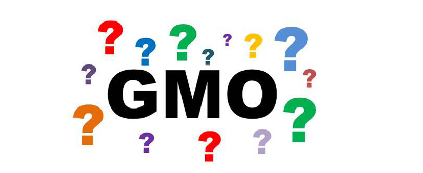 """the word """"GMO"""" with question marks"""