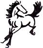 Daily Dose Equine logo