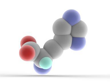 histidine-molecule-168832271