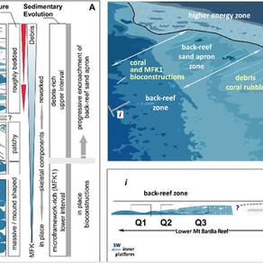 Sedimentary evolution of a coral-, microbialites- and debris-rich Upper Jurassic reef (u. Tithonian)