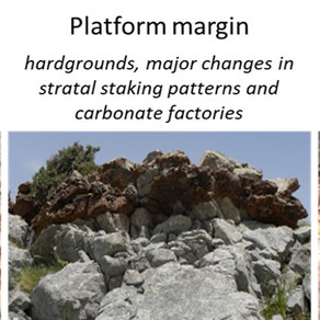 Field Seminar on Seismic and Sequence Stratigraphy of Carbonate Systems: the 3 steps procedure