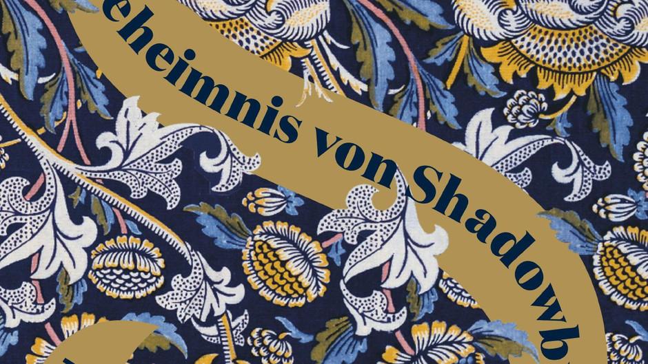 #89 Das Geheimnis von Shadowbrook von Susan Fletcher