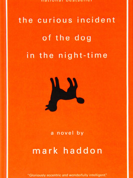 #89 The Curious Incident of the Dog in the Night-Time by Mark Haddon
