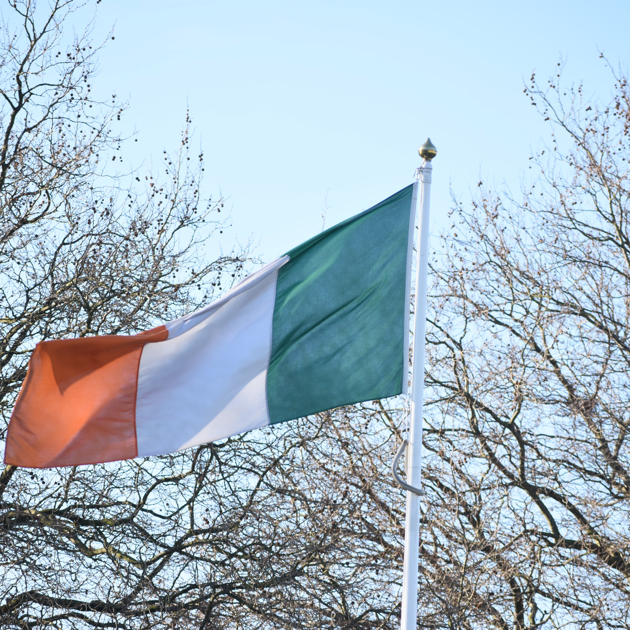 Ireland _0350