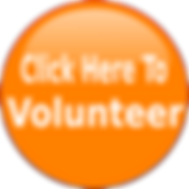 Volunteer for JSH