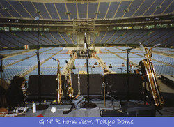 With Guns N' Roses @ Tokyo Dome