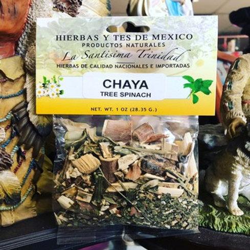 Chaya/Tree Spinach 1oz