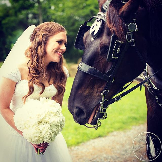 One of my beautiful brides! Photography-Paul V Photography