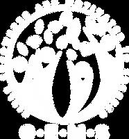 GEMS WHITE logo.png