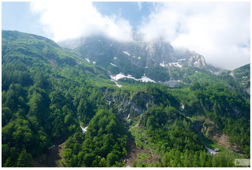 Berge, Wälder, Wald, Berg