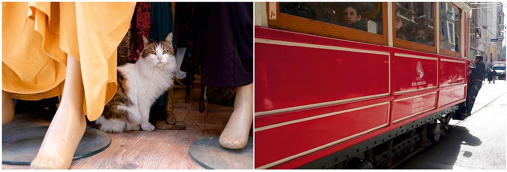 Katze bei Schaufensterpuppen, kleiner Junge Kind hängt an Zug rot