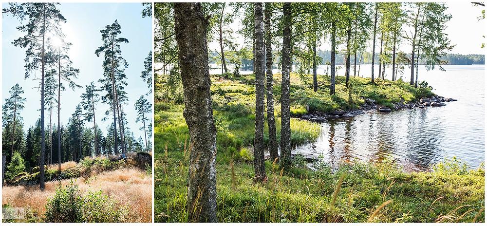Schweden Natur und See