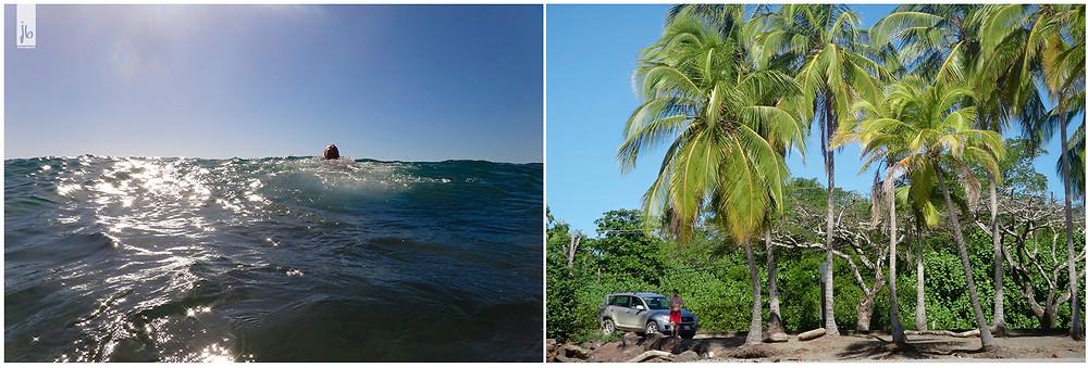 Meer, Kokospalmen, Costa Rica