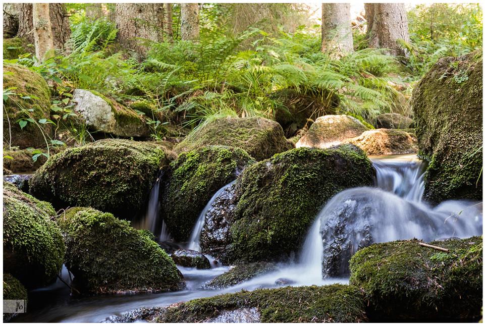 bayerischer Wald Bachlauf