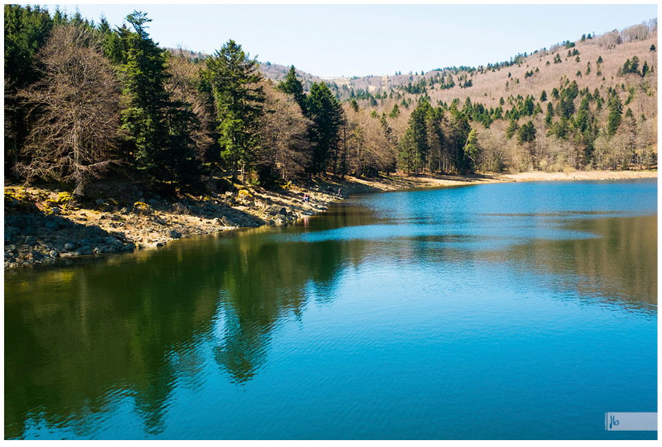See mit Nadelbäumen und vertrockneten Laubbäumen