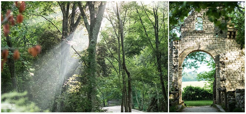 Park, Lichteinfall zwischen Bäume, altes Mauerwerk