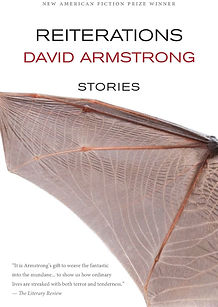 how not to write a novel armstrong david