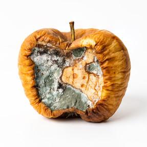 Produkt | Apfel