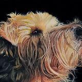 Dog-15-Emmelie-Nordstrom-Original.jpg