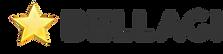 Bellagi Logo Gray New.png