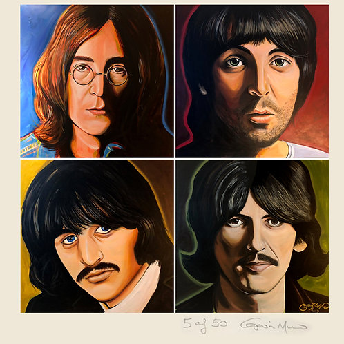Beatles White Album in colour - limited edition signed print