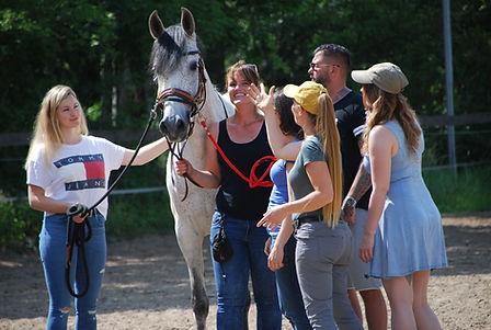 Sarah Piorkowsky Teambuilding mit Pferde