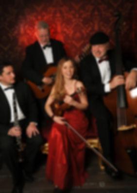 Violine Musik zu Weihnachtsfeier Firmenfeier Geburtstag