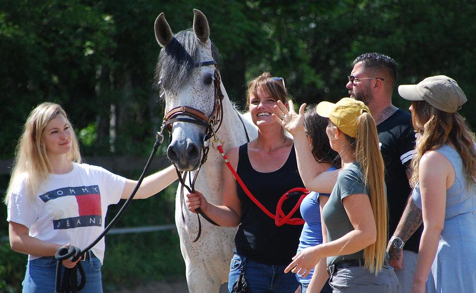 Teambuilding mit Pferd Sarah Piorkowsky