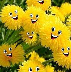 1 апреля день смеха