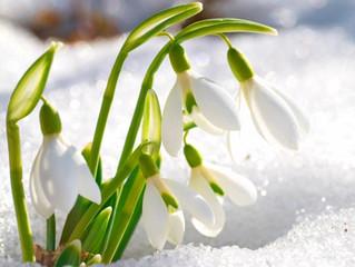 Ах, что такое весна без 8 марта?