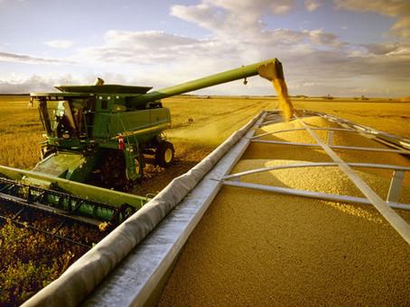 Brasil deve se tornar o maior exportador de grãos do mundo