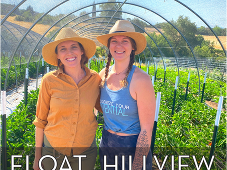 Meet Hillview Farms: How to Feel Good While Giving Back This Month