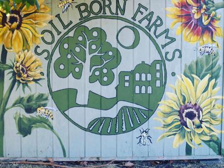 Float to Farm: Meet Soil Born Farms